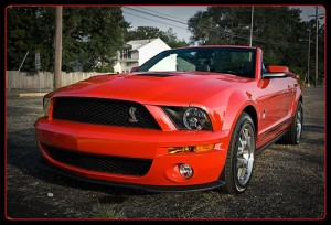 Ford Mustang Shelby Convertible
